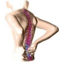 Minder kosten door fysiotherapie bij rugklachten - Fysiotherapiewetenschap.com